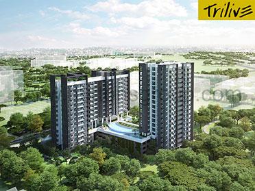 Trilive Feature Image