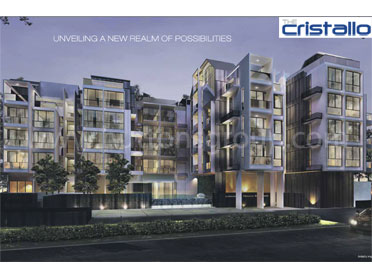 The Cristallo Featured Image